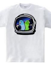 Pacific parrotlet meets astronauts