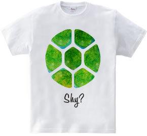 I m Shinning☆