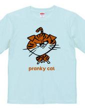 Pranky cat