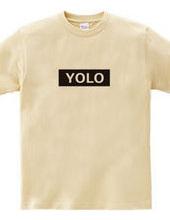 "YOLO ""enjoy life to the fullest?&qu"