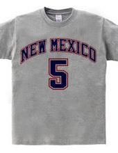 NEW MEXICO #5