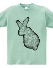 Covered with rabbit rabbit