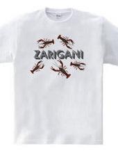 ZARIGANI_C