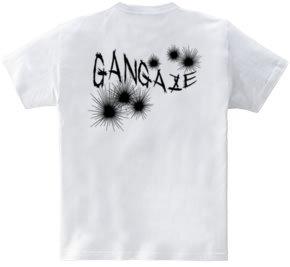 GANGAZE_KFB
