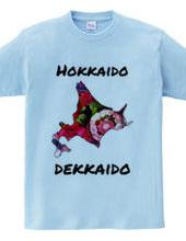 Hokkaido is big