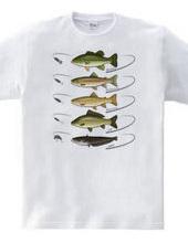 Freshwater fish_2
