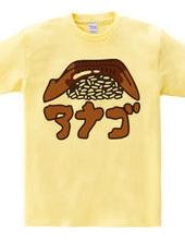 穴子のお寿司