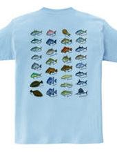 Saltwater fish_1FB