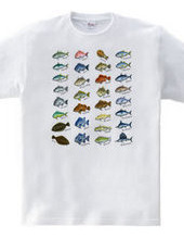Saltwater fish_1