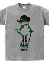AIM TOO HIGH