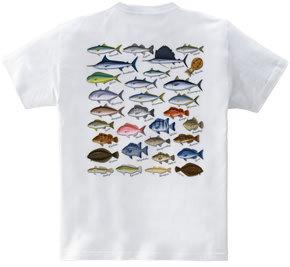 Saltwater fish_2FB