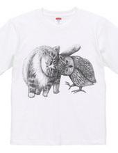 猫とフクロウ