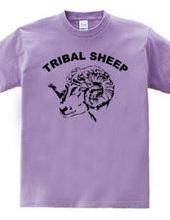TRIBAL SHEEP
