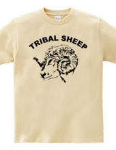 TRIBAL SHEEP