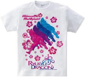 HibiscusMe Splash!!