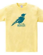 Mountain Bluebird 02