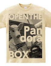 DESiGNHOLiC × Pandora-T!!!!