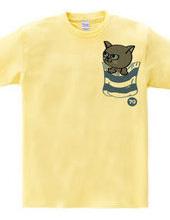 胸ポケットからネコ