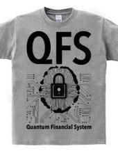 QFS:Quantum Financial System