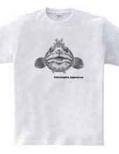フサギンポ 中サイズ(medium size design)