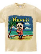 ハワイに来たよー!