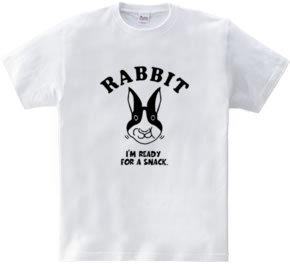 Rabbit ウサギ 動物イラスト アメカジ