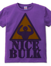 Nice_Bulk