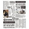 The Cat Newspaper