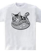 CAT_2_1W