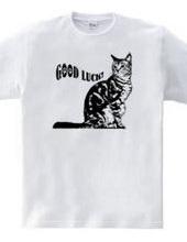 CAT_18_1W