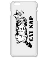 CAT_6_1W_iP