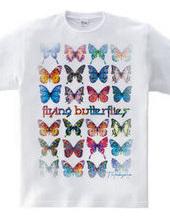 Flying Butterlies:飛ぶ蝶たち