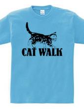 CAT_12_1W