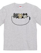 猫たち専用ポケット