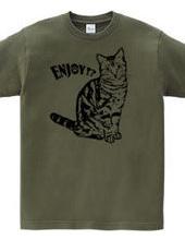 CAT_1_1W