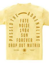 Drop out matrix