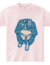ツタンカーメン犬(カラー)