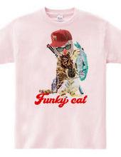 Fanky cat