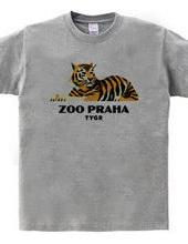 ZOO_PRAHA_TYGR