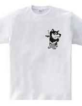 イヤイヤしちゃう柴犬(黒柴)