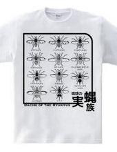 琉球の実蝿族