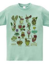 食虫植物図鑑