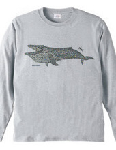 タイルのナガスクジラ