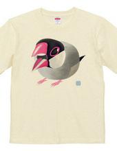 ぎゅるぎゅる桜文鳥