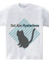 Cat Are Mysterious