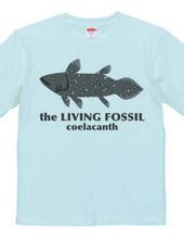 生きる化石_シーラカンス