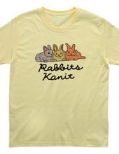 Rabbit(Kanit)