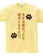 生まれ変わったら柴犬になりたい。