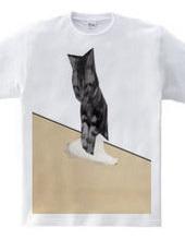 うどん職猫