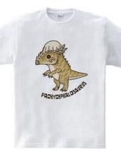 恐竜 パキケファロサウルス